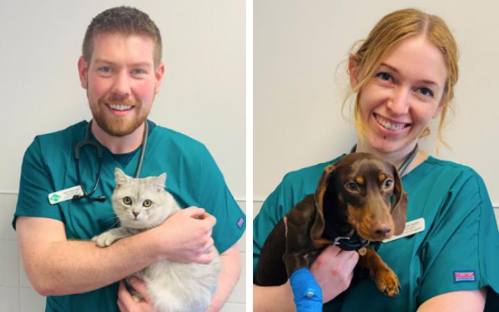 24 hour vetcare team
